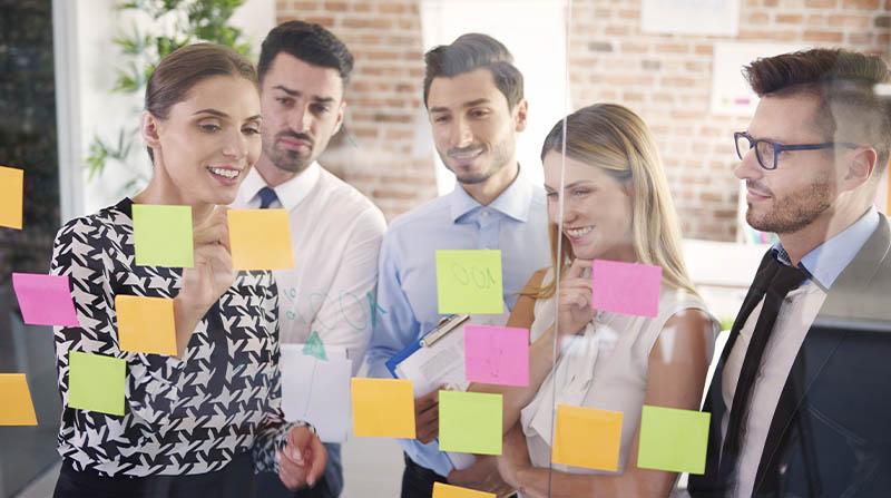 Talento en las organizaciones